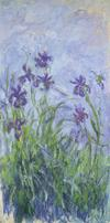 Claude Monet, Iris mauves, 1914/17