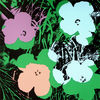 Andy Warhol - Flowers FS II.64 Sunday B. Morning