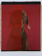 Wegman, William ◊ Red Room
