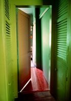 Venables, Raïssa ◊ Green Blinds