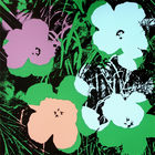 Warhol, Andy ◊ Flowers FS II.64 Sunday B. Morning