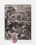 Kunsthaus Lempertz - Peter Beard, Elephant tussle in the Aberdare Forest (aus der Serie: The End of the Game/Last Word from Paradise), 1972