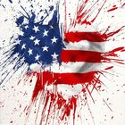 MR. BRAINWASH (Thierry Guetta), ◊ America is in the Heart