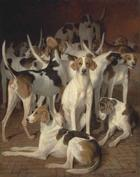 Jacques-Laurent Agasse, Hounds in a kennel