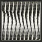 Bridget Riley, Shift, 1963
