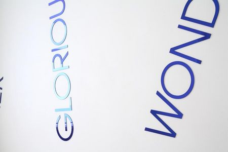 Wallpiece with Blue Mirrorwords